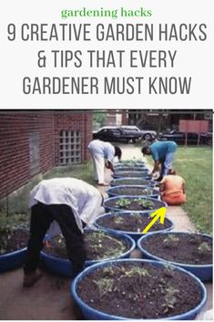9 Gardening tips that will make your garden productive gardening ideas for beginners, vegetable gardening ideas backyard ideas images small garden ideas on a budget small backyard garden ideas large garden ideas small garden landscaping ideas Small Vegetable Gardens, Small Backyard Gardens, Small Gardens, Vegetable Gardening, Diy Garden, Garden Projects, Garden Tools, Garden Beds, Diy Projects