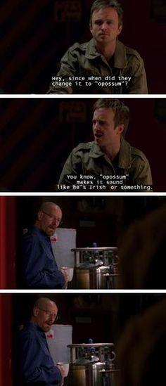 Breaking Bad - Jesse Pinkman & Walter White