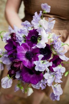 ~~ Anemone and Sweet Pea ~~ What A Wonderful Way To Show Off The Purples ~~