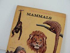Vintage Children's Book, Vintage Nature Book, Mammals, Esther K. Meeks, Follet Beginning Science Book, 1965 on Etsy, $9.95