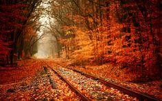 Senderos de otoño