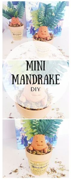 DIY Mini Potted Mandrake, Harry Potter Tutorial | Worthington Ave