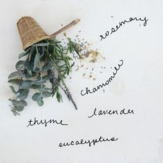 3 DIY Homemade Herbal & Floral Steam Facials | Free People Blog