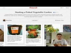 Starting a Potted Vegetable Garden VIDEO by Marty Ware from www,pottedvegetablegarden.com