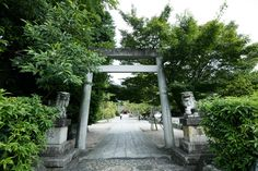 Austrian-born Florian Wiltschko is a Shintō priest who has been interested in Japan from a young age. He notes that there is great wisdom in the Shintō approach to life that can help us return to a state of divine innocence. Torii Gate, Priest, Entrance, Scenery, Sidewalk, Outdoor Structures, Japan, Fine Art, Southern