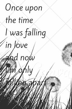 Once upon the time I was falling in love and now I'm only falling apart.