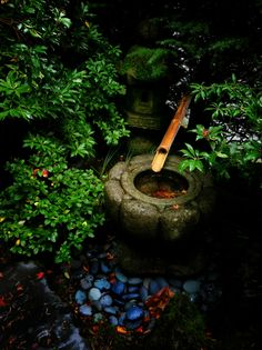 Japanese Gardens Take My Breath, Japanese Gardens, Best Iphone, Iphone Photography, Your Image, Photographers, In This Moment, Eye, Board