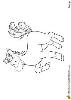 Dessin d'un joli petit poney, coloriage pour enfants