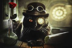 #steampunk cat aka Mr. Steamcat Photograph by Evgeny Morozov on 500px