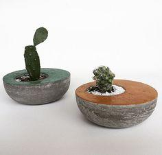 Vasinhos Cactus Coloridos