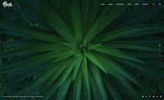 Brush - Photography PSD Template by CaseTheme   ThemeForest