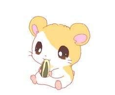 Hamtaro-Little hamster, big adventure! Cute Animal Drawings, Kawaii Drawings, Cartoon Drawings, Cute Drawings, Hamtaro, Teddy Hamster, Hamster Cartoon, Kawaii Anime, Kawaii Cute