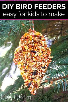 Are you searching for the best DIY bird feeder ideas for kids to make? Learn how to make easy homemade bird feeders for hanging in the backyard, in your beautiful garden or as an ornament on a Christmas tree. Our unique recipe is even peanut butter free! Hanging Bird Feeders, Diy Bird Feeder, How To Make Diy, Make It Simple, Activities For Kids, Crafts For Kids, Senses Activities, Toddler Crafts, Spring Activities