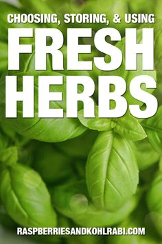 Learn how to cook with fresh herbs. Along with tips on the best way to choose and store fresh herbs. Herb Guide, Cooking With Fresh Herbs, Brown Butter Sauce, Asian Soup, Stuffed Mushrooms, Stuffed Peppers, Vegetarian Cheese, Drying Herbs, Learn To Cook