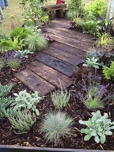 garden path- railway sleepers. we could surround with mulch like this and then have a strip of lawn surrounding...