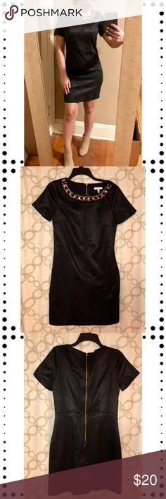 NWOT Black snake print dress with jeweled collar Great Halo brand black snake print dress with jeweled collar  Never worn, only tried on for pictures  Pictures taken with and without flash Fits true to size, could fit an XS as well if you prefer a loose fit.  The dress has an under layer  Bundle and save, I'll make a private offer 🛍🛍🛍 Halo Dresses