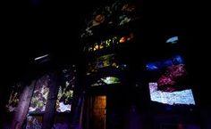 Muur projectie in de WesterLiefde