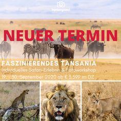 Top-23 Paris Sehenswürdigkeiten | Reiseblog & Fotografieblog aus Österreich Okavango Delta, Zell Am See, Salzburg, Iceland, Travel Inspiration, Florida, Movies, Movie Posters, Animals