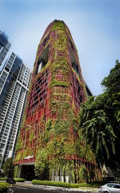A verdant tower of green in the heart of Singapore's dense CBD, Oasia Hotel Downtown is a prototype of land use intensification for the urban tropics. Singapore Architecture, Green Architecture, Futuristic Architecture, Sustainable Architecture, Amazing Architecture, Pavilion Architecture, Amazing Buildings, Building Architecture, Residential Architecture