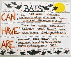 Can/Have/Are chart Batty For Bats!