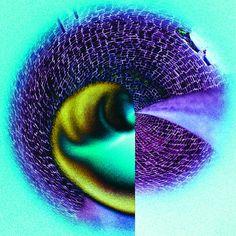Thumbs up   To buy this picture please visit www.3aART.de Zum Erwerb dieses Bildes besuchen sie bitte unsere Hompage www.3aART.de