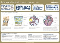 In this infographic we explore how nutrients contribute to joint nourishment for the improvement of joint structure, pain and function. Joint Medicine, Health And Wellness, Autoimmune, Arthritis, Infographics, Posters, Sugar, Change, Diet