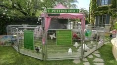 Petting Zoo , Orange County, Los Angeles, Riverside, San Bernardino