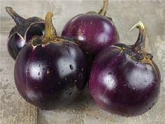 Ronde De Valence Eggplant