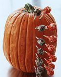 Leave on porch if you're not going to be home. Pumpkin Lollipop Holder - Martha Stewart Holidays