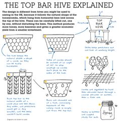 top bar beehive for sale - Google Search