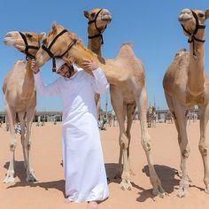32 фотографии из жизни наследника престола Арабских Эмиратов