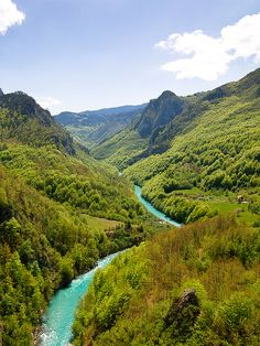 The canyon of Tara River, Montenegro