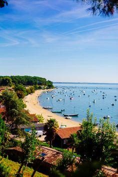 ⁓ La Pointe aux Chevaux ⁓ Lecture à l'ombre des pins, face au Bassin, vue sur le Bassin d'Archachon #vraiesvacances #legecapferret #lecture #vacances