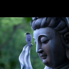 Guan Yin and the ten great protections of the Goddess of Mercy: Avalokiteshvara, Bodhisattva of Compassion - Buddha Weekly: Buddhist Practices, Mindfulness, Meditation Great Compassion Mantra, Heart Sutra, Buddhist Practices, Buddha Buddhism, Gautama Buddha, Buddha Quote, Guanyin, Archetypes, Feng Shui