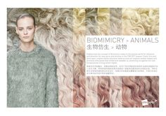 SPINEXPLORE - AW 2017 -2018 Trend fashion knitwear | Biomimicry > Animals