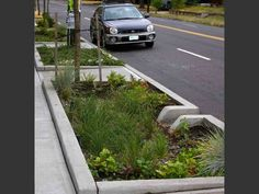 green streets - vegetated bioswale in Portland