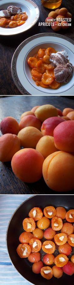 My sentimental fruit: Honey Roasted Apricots (+ ice cream)