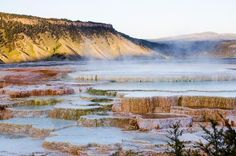 Yellowstone National Park and Cody, Wyoming -- things to do and see in the area