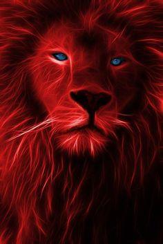 The Lion King Fractalized iPhone Wallpaper Free – GetintoPik Lion Images, Lion Pictures, Beautiful Creatures, Animals Beautiful, Cute Animals, Big Cats Art, Cat Art, Lion Love, Tiger Art