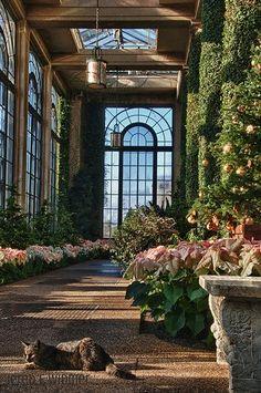 Longwood Gardens, Kennett Square, PA www animalearthessence com – Garden Room Style At Home, Longwood Gardens, Kennett Square, Garden Design, House Design, Design Jardin, Mawa Design, Glass House, Home Fashion