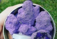 Purple Cannabis Pictures