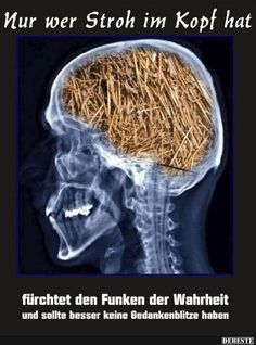 PETER ALLMARK: Abstract This article claims that health promotion is best practised in the light of an Aristotelian conception of the good life for humans. Facebook Humor, Cool Pictures, Funny Pictures, Funny Memes, Hilarious, German Words, Book Of Hours, Cool Words, Haha