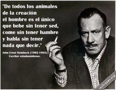 De todos los animales de la creación el hombre es el único que bebe sin tener sed, come sin tener hambre y habla sin tener nada que decir. - John Ernst Steinbeck