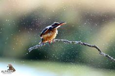 Agua y colores de Sierra Morena