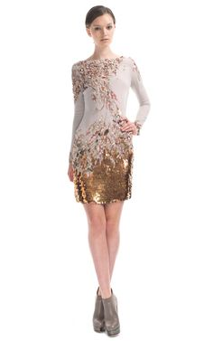 Shop Embroidered Long Sleeve Dress by Matthew Williamson for Preorder on Moda Operandi  $3,995.00