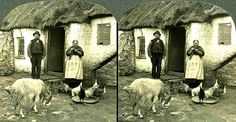 THE CHARMS OF A PEASANT HOME in OLD IRELAND This photo is a good 100 years old