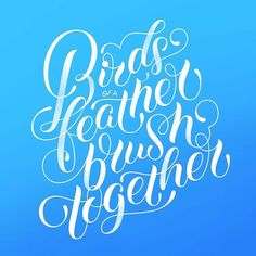 Beautiful letter forms. Type by @katepullendraws - #typegang - typegang.com   typegang.com #typegang #typography