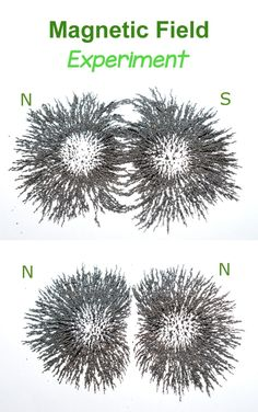 Magnetic Field Science Experiment for Kids - using iron filings. Earth And Space Science, Stem Science, Preschool Science, Science Resources, Elementary Science, Physical Science, Magnets Science, Easy Science, Preschool Ideas