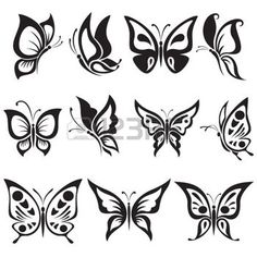 Illustration of Vector set black and white butterflies vector art, clipart and stock vectors. White Butterfly Tattoo, Butterfly Black And White, Butterfly Tattoo Designs, Butterfly Flowers, Butterfly Wings, Black Tattoos, Tribal Tattoos, Tatoos, Simple Flower Drawing