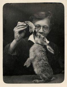 wonderful rabbit by unexpectedtales, via Flickr